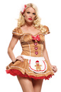 83469 sexy gingerbread girl adult christmas costume color